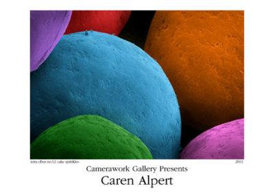Caren Alpert