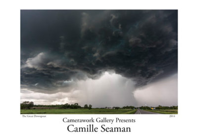 Camille Seaman